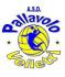 http://fipavonline.it/img/loghi_societa/120600313/logo.png